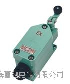 LX8077-11行程开关 LX8077/1-11