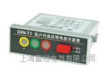 DXN-TII户内高压带电显示器 DXN-TII