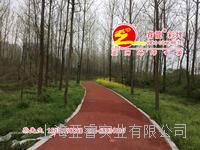 彩色透水混凝土,生态透水地坪,海绵城市建设主打透水路面,上海睿龙厂家,高品质施工透水砼绿道铺装