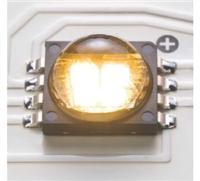 Cree LED光源 MC-E系列
