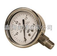 XG/Y-B系列全不锈钢压力表 Y-B