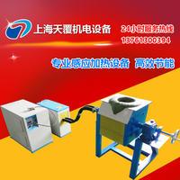 全固态中频熔炼炉 DLZ-45