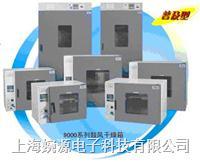 鼓风干燥箱DHG-9035A DHG-9035A