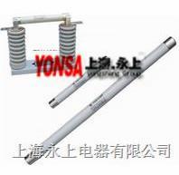 XRNP2-24/5高压限流熔断器