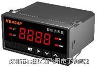 单相功率表 HB404P HB404W