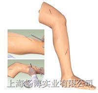 高级外科缝合下肢模型 CBB/LV2