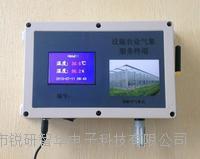 温室大棚农业物联网监测终端 RYQ-4A-WS