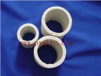 化工陶瓷拉西环 φ15 φ25 φ50