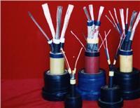 阻燃电缆,矿用橡套电缆,MYPTJ高压屏蔽矿用电缆 MY.MYP,MC,MCP,MZ,MZPMYPT,MYPTJ,MCPT,MYQ,UYQ