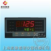 GZX-105智能多路巡檢儀 GZX-105