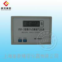 FYP-3型數字式氣壓表 FYP-3