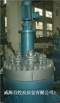高压反应釜(端部平盖结构)
