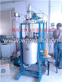 10L實驗用反應釜 WHFS-10