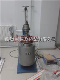 5L實驗用反應釜 WHFS-5L