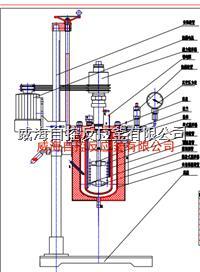 5L反应釜 WHFS-5L