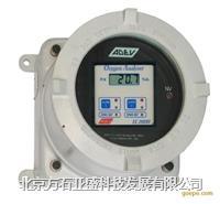 在線氧分析儀 EC2000