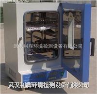 湖北电热恒温鼓风干燥箱 DHG-9203A
