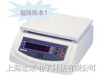 BWS628上海电子称 BWS628