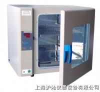 电热恒温培养箱/恒温培养箱/DH5000 DH5000