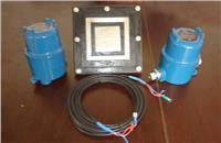 美国DE502射频导纳点位物位计 美国DE502
