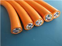 氟塑料絕緣硅橡膠護套電力電纜 ZR-F46(FV)3*4+1*2.5
