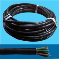 氟塑料絕緣鎧裝電纜 DJFPV32