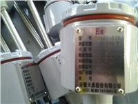 隔爆式鎧裝熱電偶 WRFB-440
