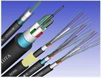 光纖光纜 GYTA-8A1b