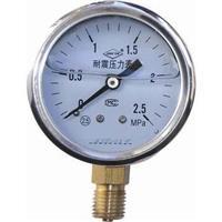 不銹鋼壓力表 Y-153B-F 0-1.6MPa
