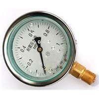 耐震壓力表YN-150ZQ