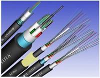 GYXTS 中心松套管光纖光纜 GYXTS-4A1