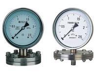 Y-100BF/Z/MF/316不銹鋼法蘭隔膜壓力表 Y-100BF/Z/MF/316