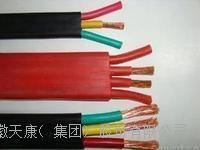 耐高溫扁電纜 YGCB-VFRP