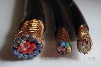 安徽天康公司計算機電纜型號規格圖片 DJYVPR1x2x1.5