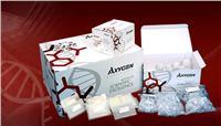 Axygene96血基因组DNA小量制备试剂盒 AP-96-BL-GDNA-12