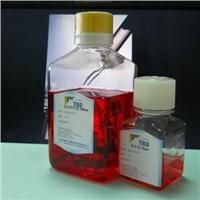 TBD哺乳动物杂交瘤细胞液体完全培养基(低IgG)