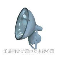 防水防塵防震投光燈 ZT6900