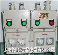 BXM(D)81/BXM(D)51/BXM(D)53防爆照明(动力)配电箱详细资料