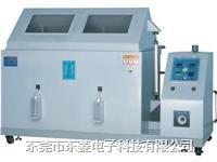 盐雾试验箱 DL-160