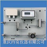 氩气在线露点测试系统 DPSS-6100CW-100
