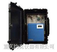 便携式硫化氢分析仪 331型