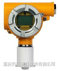 两线气体探测器 Series 3000 XPIS