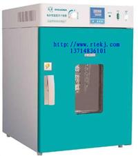 电热鼓风干燥箱/烘箱/烤箱-立式 RTE-DRX100