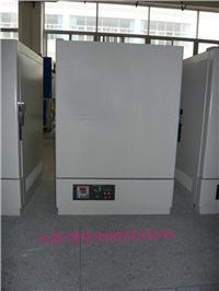 充氮烘箱 BY-DK50B