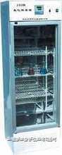 250B数显生化培养箱 250B数显生化培养箱