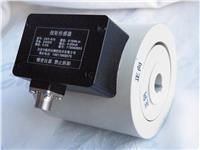 盘-轴扭矩信号电子耦合器 CKY-815