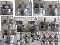 日本(NIHON SPEED)K1P齿轮泵,K1P4R11A齿轮泵,K1P4L11A油泵,K1P4RV11A泵 K1P4R11A,K1P4L11A,K1P4RV11A,K1P10R11A,K1P10L11A,K