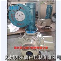 整体调节型电动头 DQW600-0.5/ZT