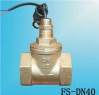 FS-DN40水流开关 FS-DN40