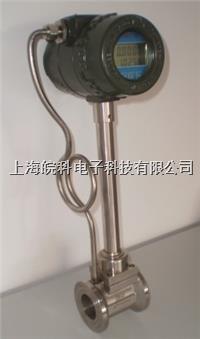 氦气流量计 LUGB